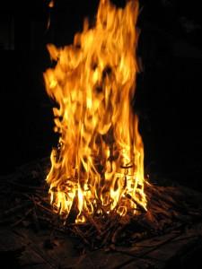 fire on tree stump firepit