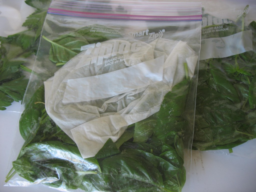 How-To: Freezing Fresh Herbs