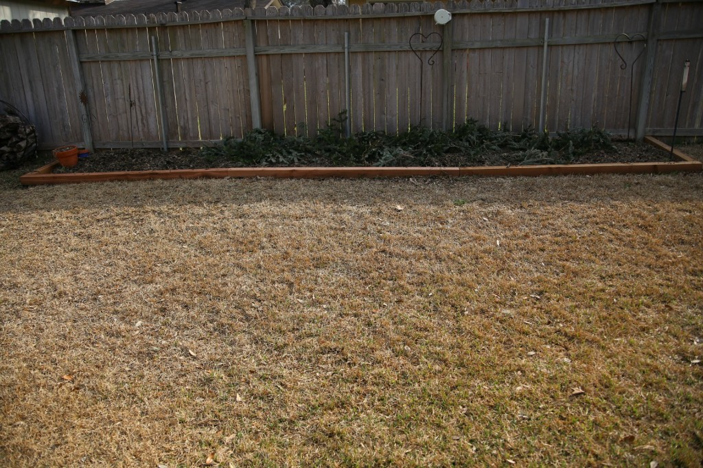Easiest DIY Cedar Flower Bed You'll Ever Build