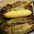 Easy Foolproof Grilled Corn
