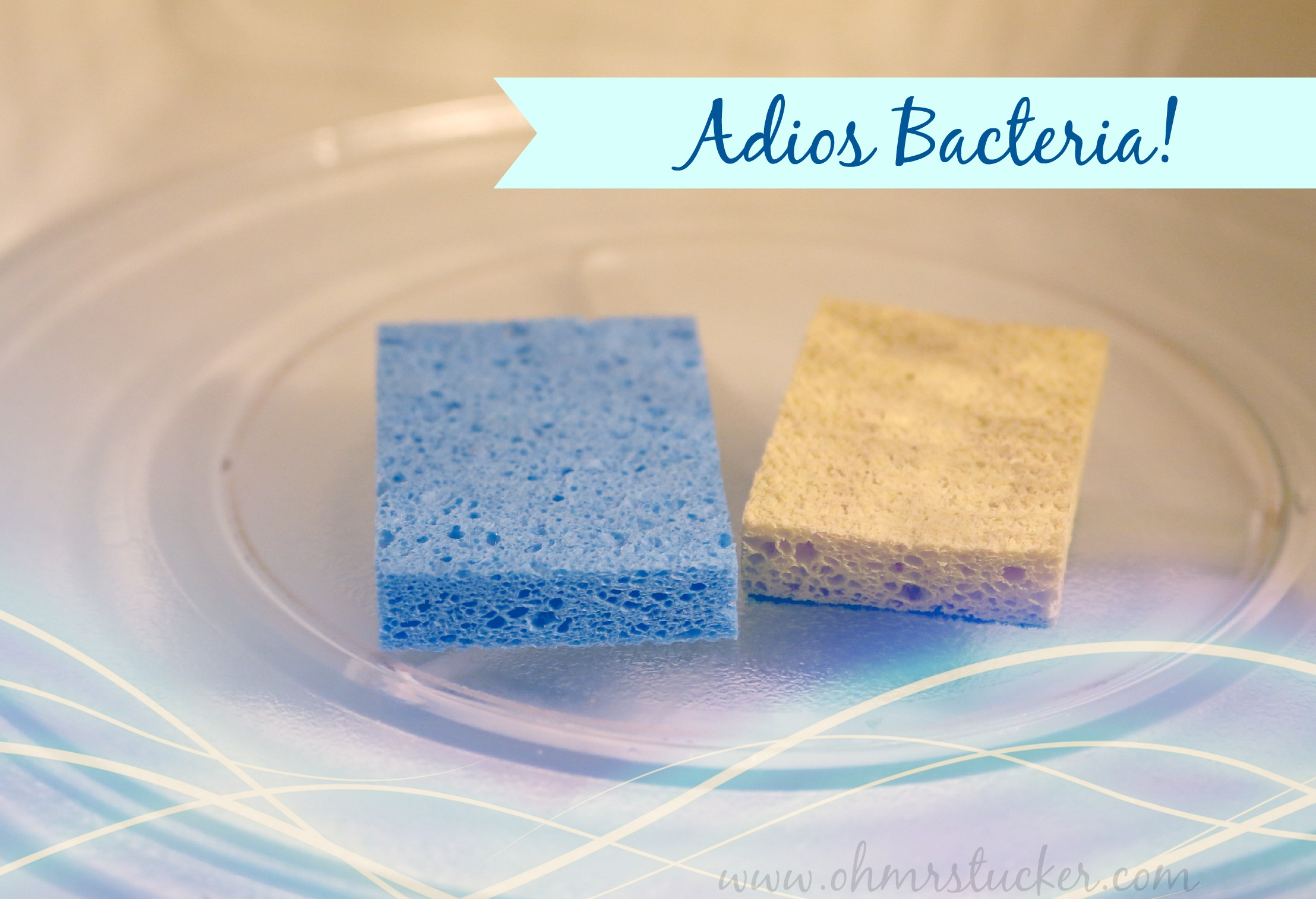 How to Eliminate 99.9% of Bacteria in Kitchen Sponges