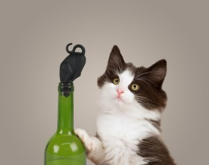 WIne + Stop Kitty = ALL THE FUN!