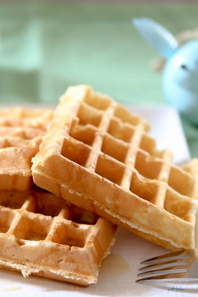 The Best Waffles in the World