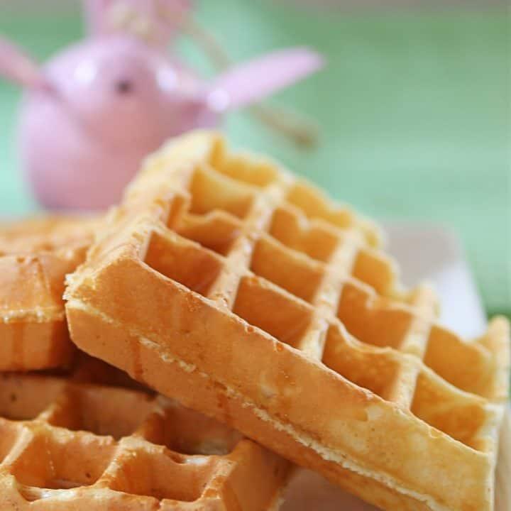 Joy Bella Waffle Recipe