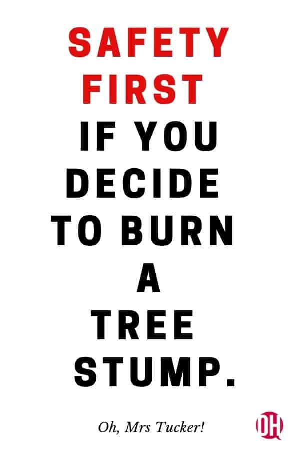 graphic advising to be safe when burning a tree stump