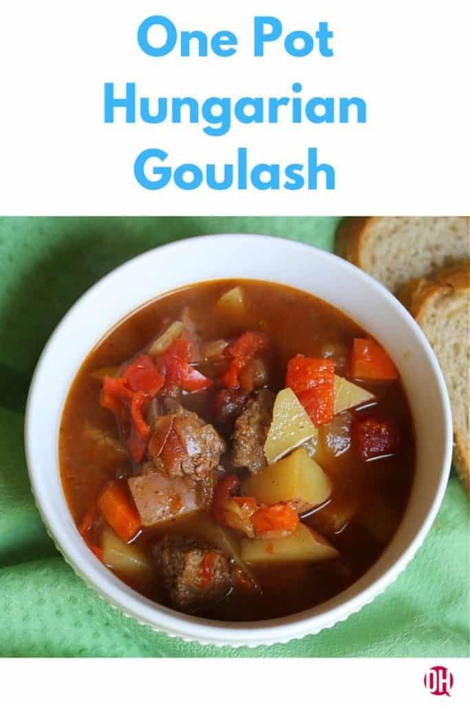 bowl of hungarian goulash