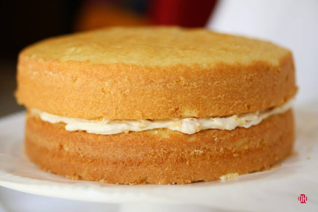 two layers of cake with frosting in between
