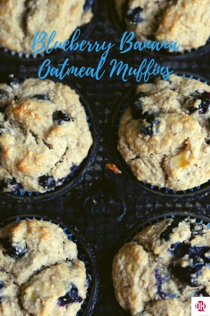 blueberry muffins still in tin